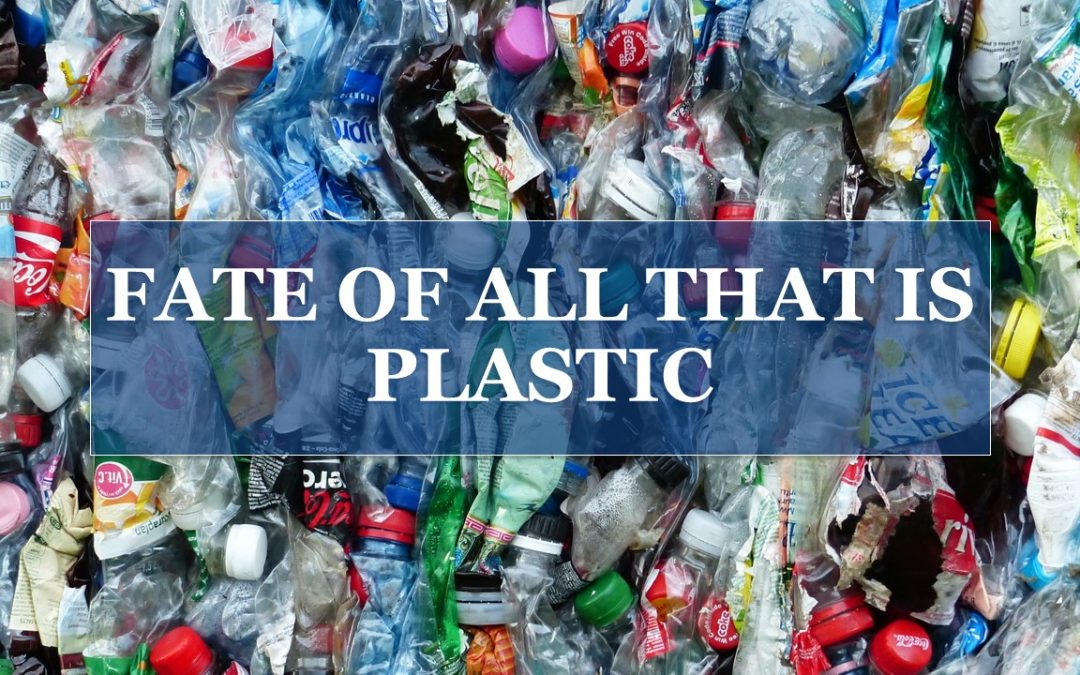 Fate of All That is Plastic